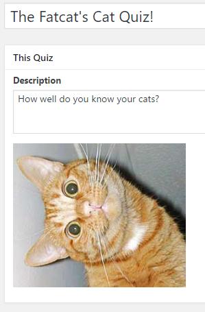 quiz-cat-ht-name-description